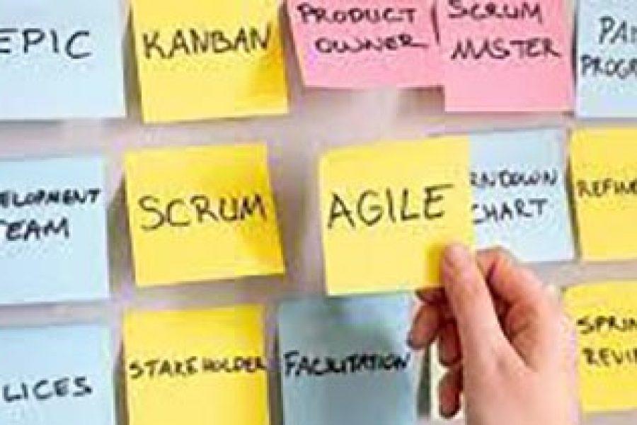 Jungle-Academy-Formation-agile
